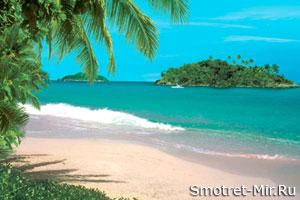 На Канарских островах