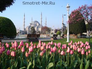 Стамбул в Турции
