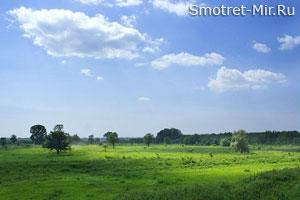 Возвышенная лесостепь Киевской области