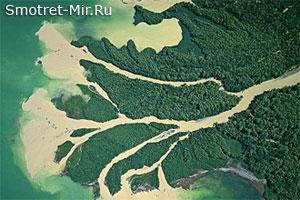Дунай Украина
