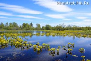 Озера и болота