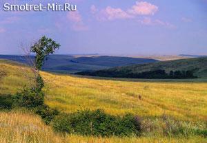 Среднестепная подзона Украины