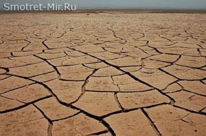 Фото пустыни
