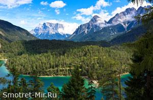 Альпийский лес