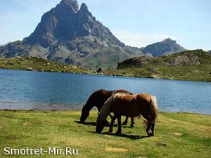 Вершина Пиренеев