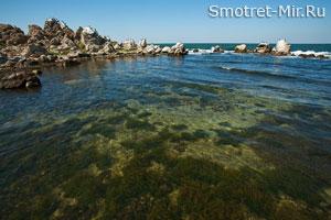 Вода Крымской степи