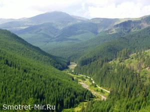 Горы Карпаты Фото