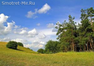 Днепровские лесостепи