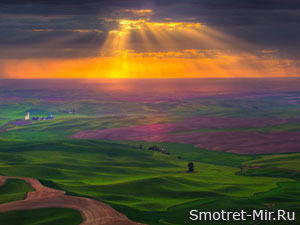 Равнина Польши