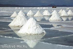 Соленые озера Камарга