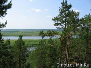 Природа лесостепи Украины