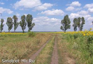 Степь Украины