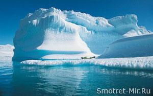 Фото остров Новая Земля