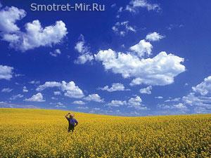 Днепровско-Молочанская степь