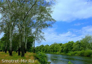 Река Псел