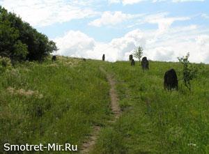 Хомутовские степи