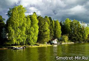 Леса Норвегии