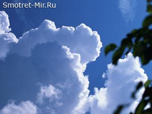 Содержание озона в воздухе