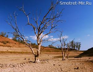 Изменение климата на Земле