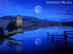 Планета Земля и Луна