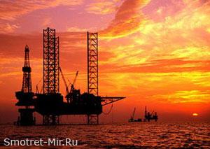 Поиски нефти