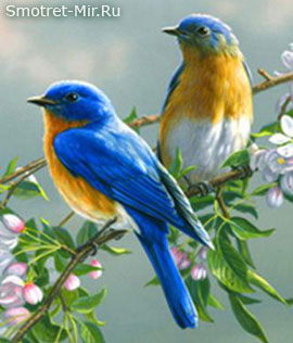 Весенний прилет птиц