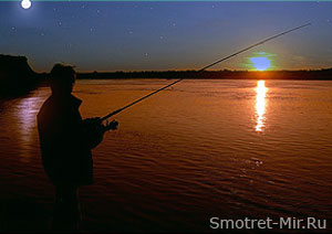 Прогноз клева рыбы