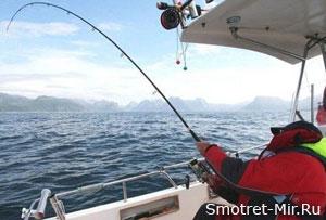 Рыба Исландии