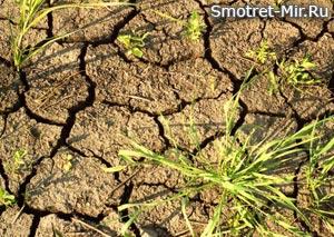 Информация о засухах