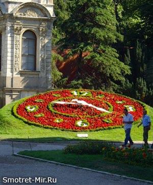 Картинки цветочные часы