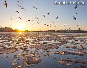 Река Ока фото весной