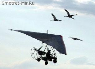 Полет с журавлями