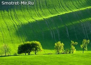 Центральная Россия фото