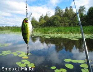 Ока река рыбалка фото