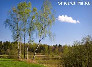 Юг Восточно-Европейской равнины