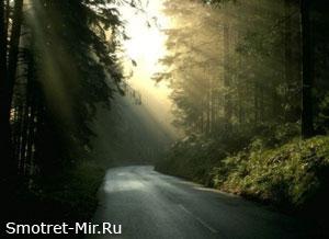 Фото Кодры Молдовы