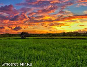 Восход солнца картинка