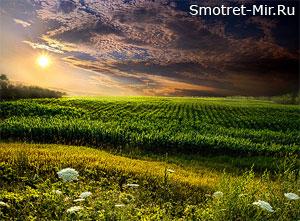 Восход солнца пейзажи