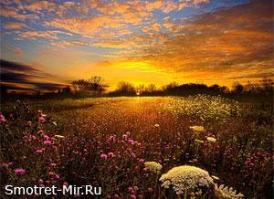 Восход солнца фото