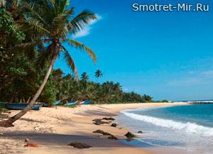 Отдыхайте на Шри-Ланке