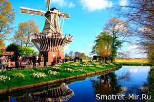 Парк цветов Кёкенхоф фото