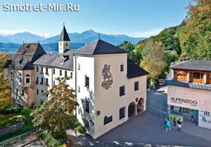 Зоопарк Alpenzoo в Инсбруке